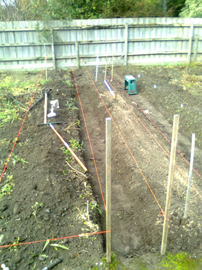 My brother's vegie garden in Tinytown, featuring a honking great trench. For potatoes? Or murdered neighbours?