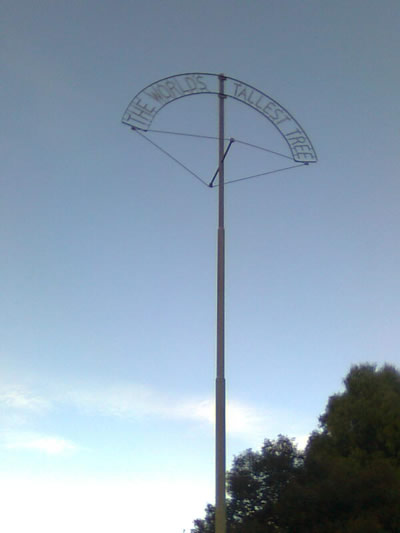 """Metal pole with """"World's Tallest Tree"""" in lettering at the top"""