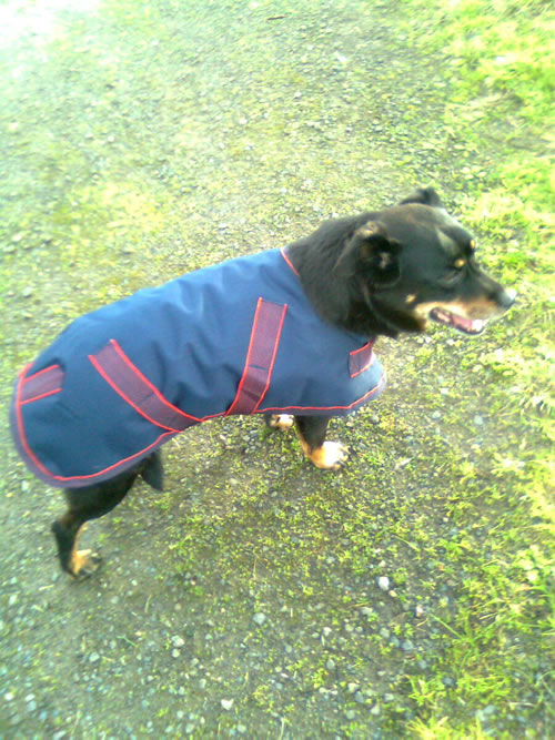 Maggie wearing her new blue coat